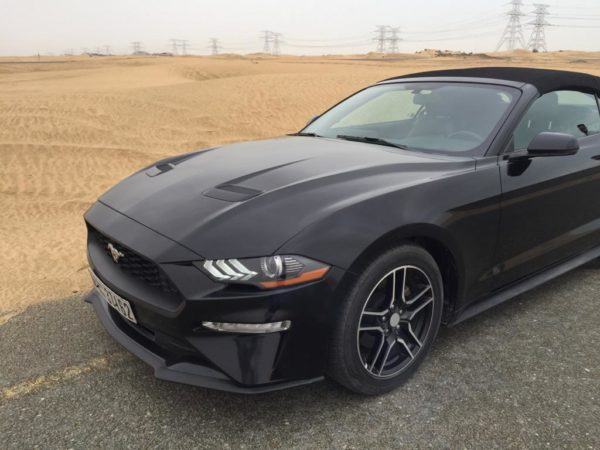 Ford Mustang Black GT Edition